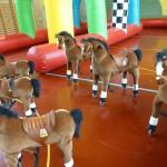 Pferderennen mieten