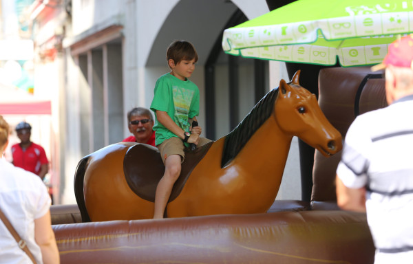 Pferde-Rodeo