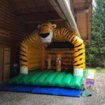 Gumpiburg Tiger Vermietung Schweiz